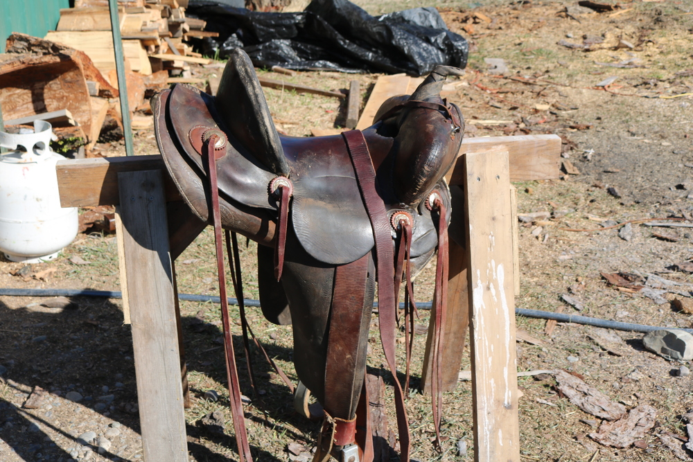 "13.5"" C.E. Lee saddle"
