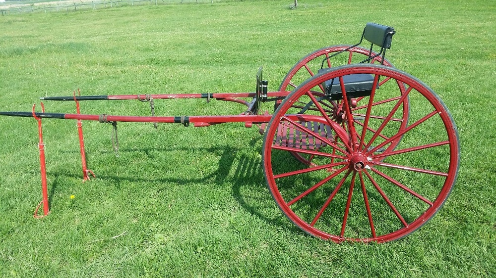 show cart for regular size horse