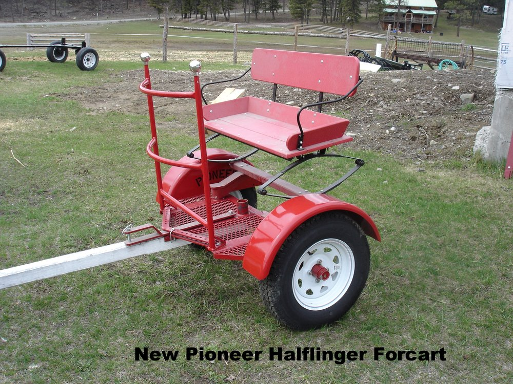 New Halflinger Forcart.JPG