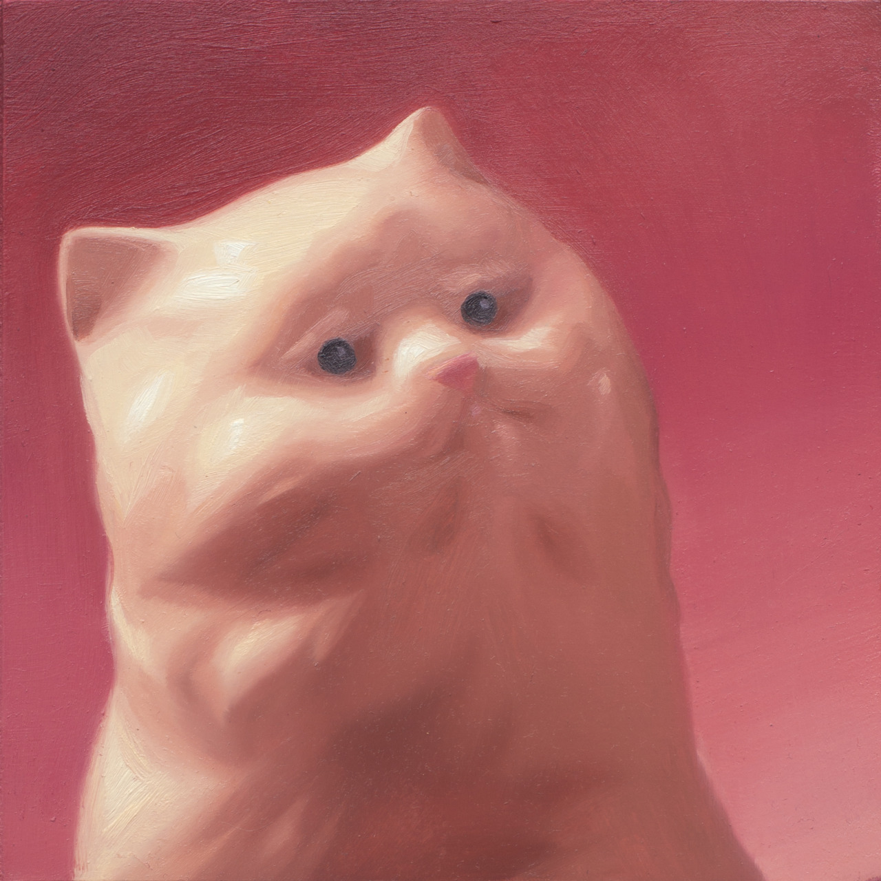 "megan-ellen-m: White Kitten 6 x 6"", Oil on panel"