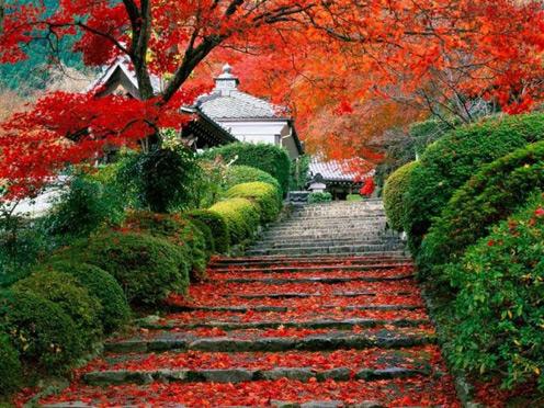 Take me there: Hello Autumn