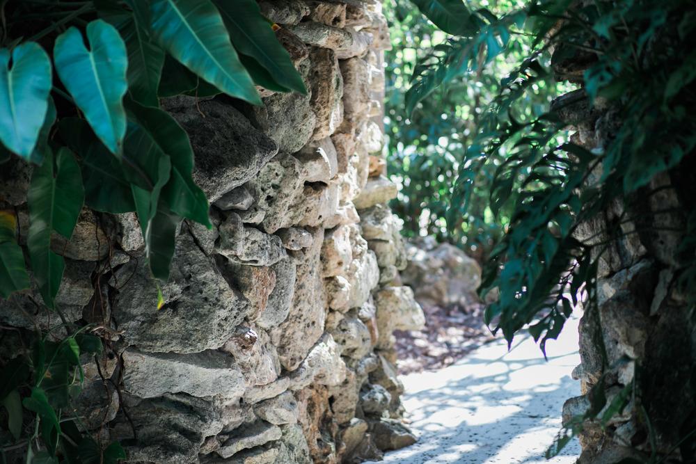 Carmela Blackwell Photography Hollis Gardens