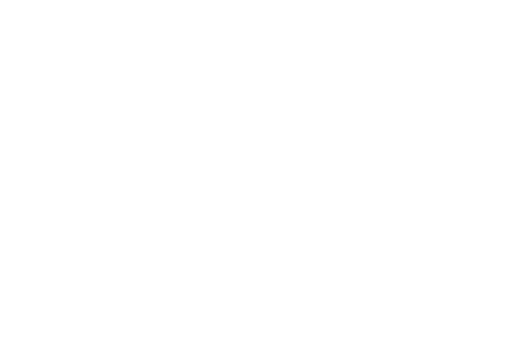 ZYDE ELEMENTS