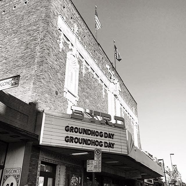 Nailed it, @thebyrdrva.  Repost @knownagency  #groundhogday
