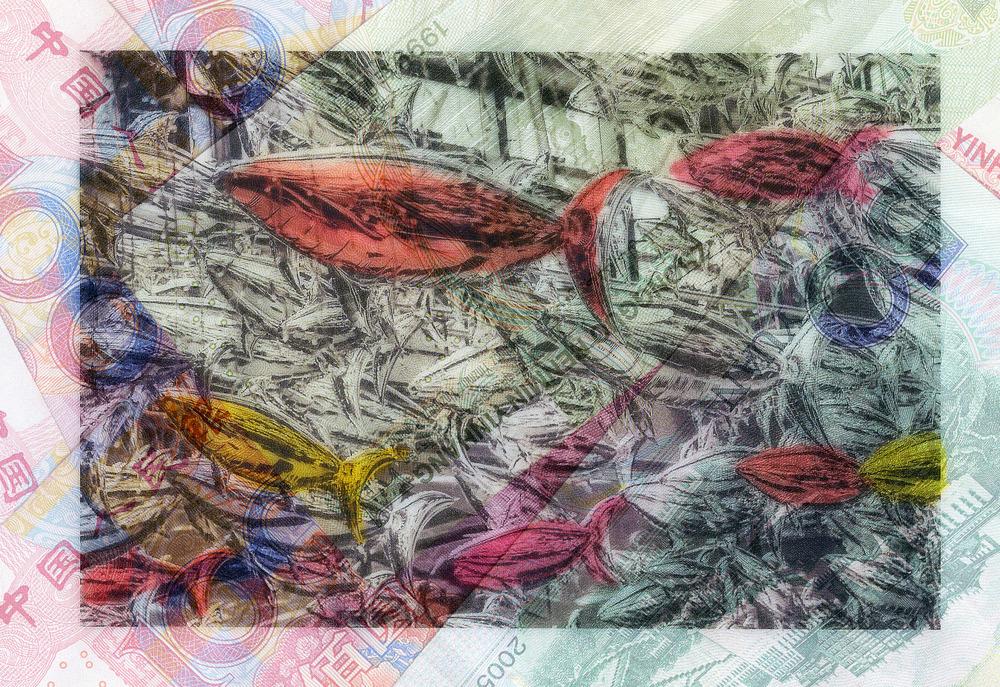 Fishanddollars.jpg