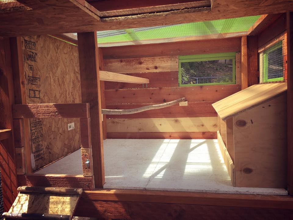 Inside the Henhouse, I kept reading mixed reviews on what to use for the roost bars. So I put the two most popular ones in to see which on the girls liked better. The clear winner is the 2x4.
