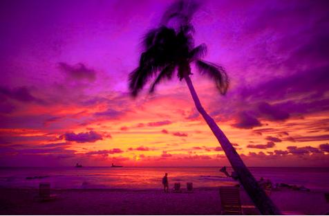 Sunset Cove, Grand Cayman