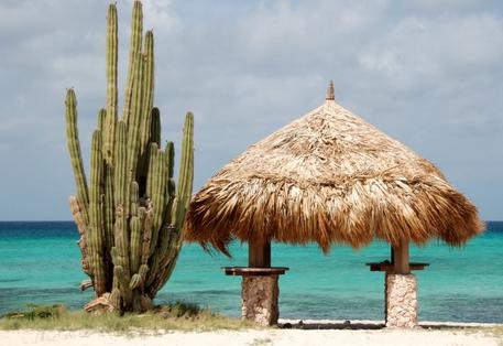 Arashi Beach- Aruba