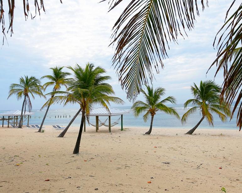 Brac Reef Resort 2.PNG