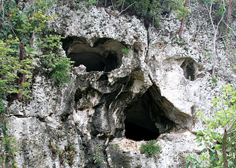 skull cave.jpg