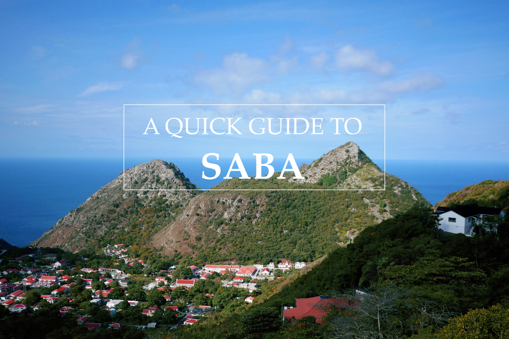A quick guide to Saba