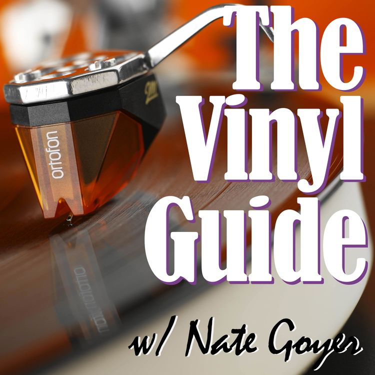 Vinyl | Vinyl podcast | The Vinyl Guide | For Record Collectors