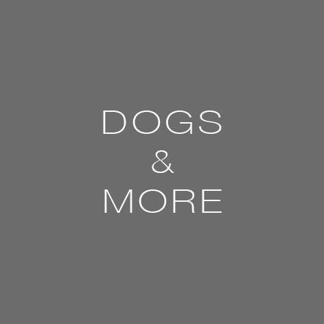 dogs_more.jpg