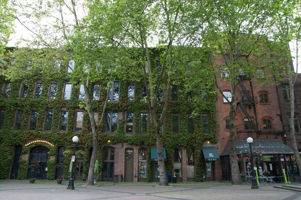 Quaint Book Stores in Seattle - Savannah Page