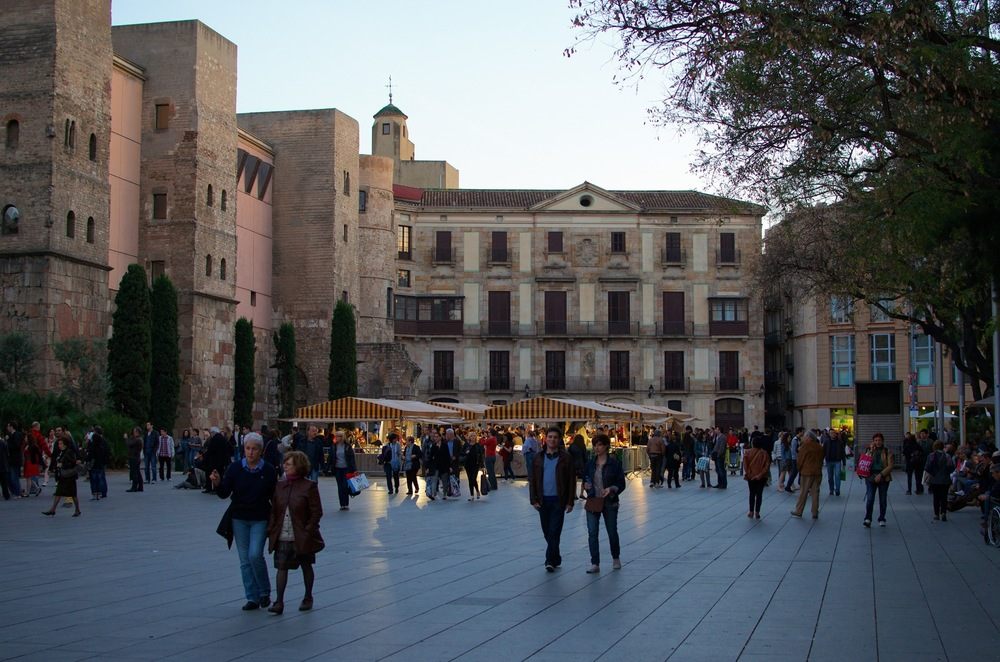 Barcelona 2013 - Savannah Page 4