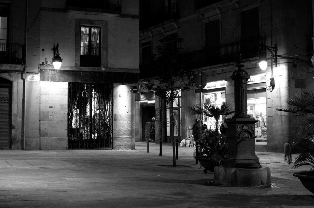 Barcelona 2013 - Savannah Page 5