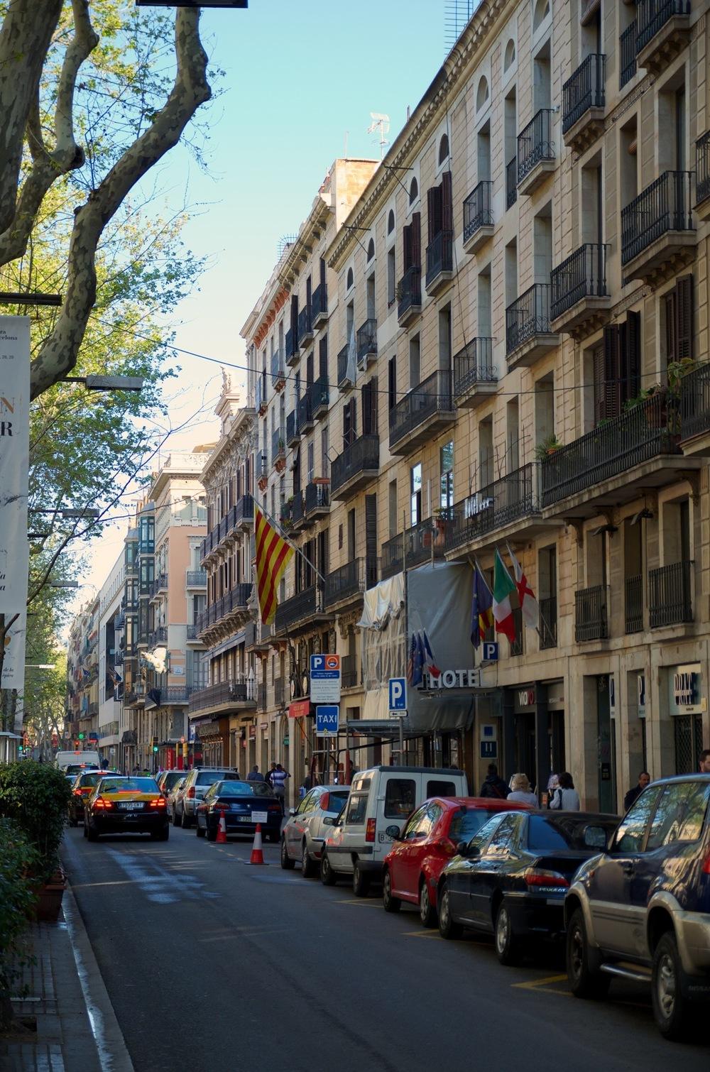 Barcelona 2013 - Savannah Page 6