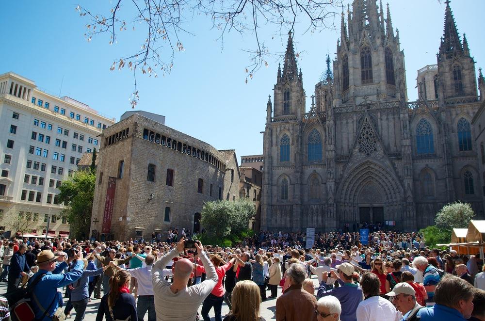 Barcelona 2013 - Savannah Page 8