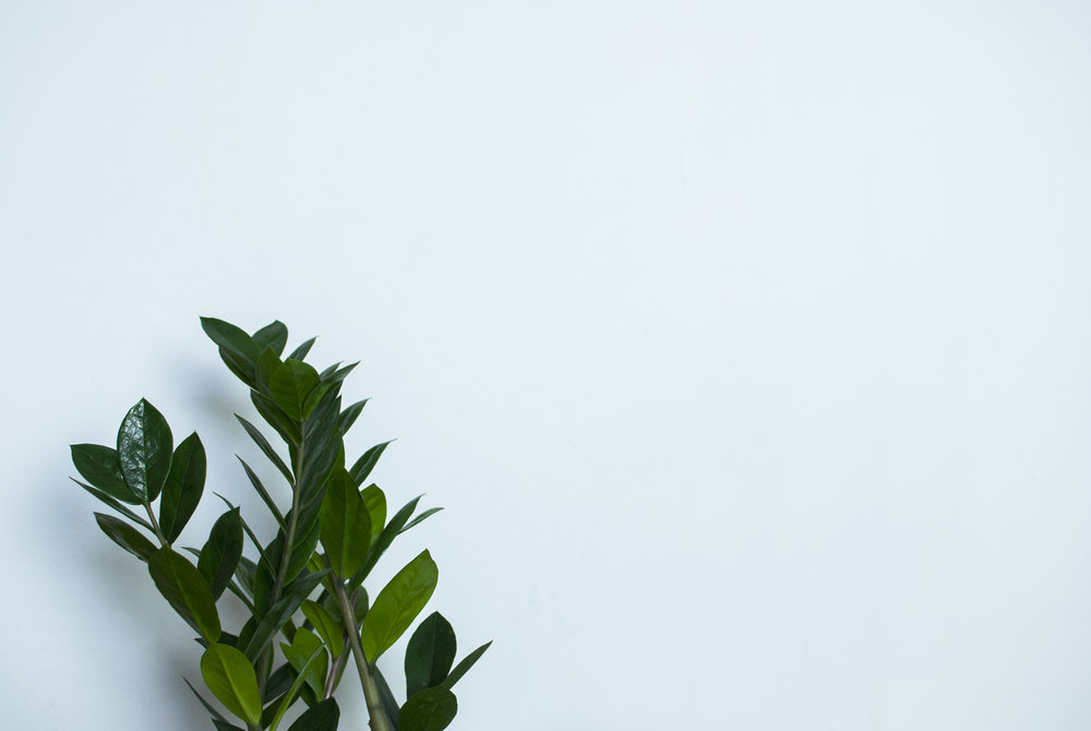 Veryan Raiker Spring Whites London