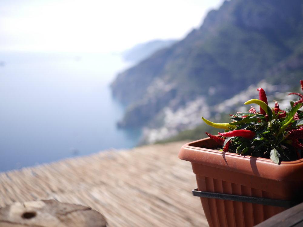 Amalfi Coast Trattoria La Tagliata view from our table.JPG