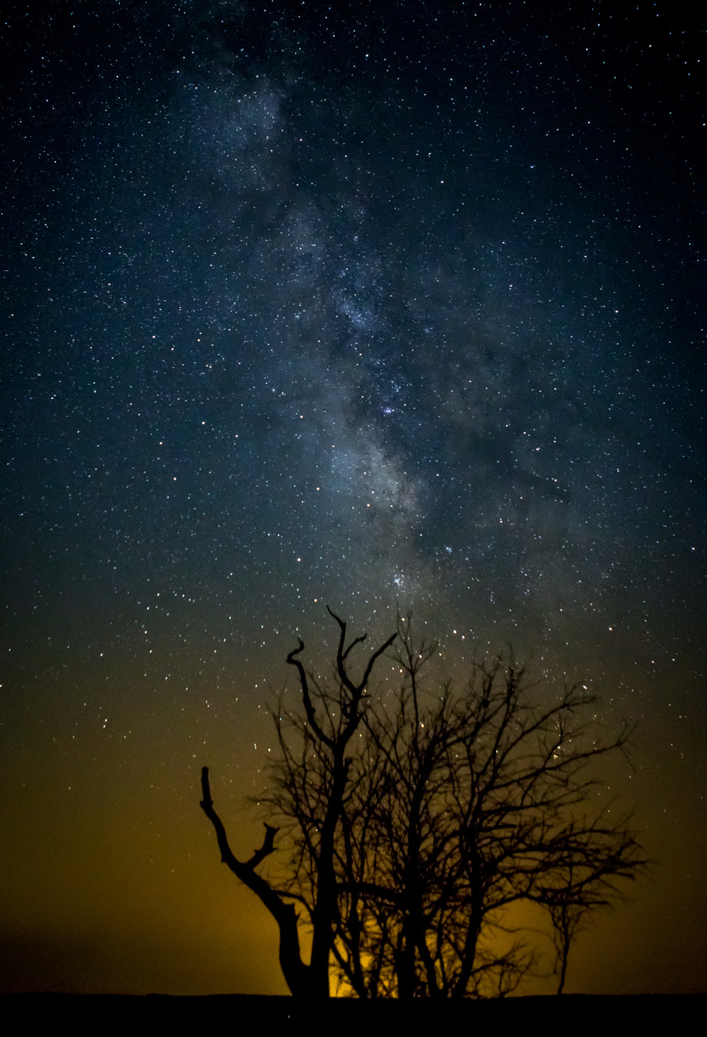 And this was the shot that we came for. Interesting foreground object. Milky Way in the background. Next time around, i'll try to get that darn tree in focus as well. I may edit the heck out of this and do so later. But... I'm really happy with the way this one looks.
