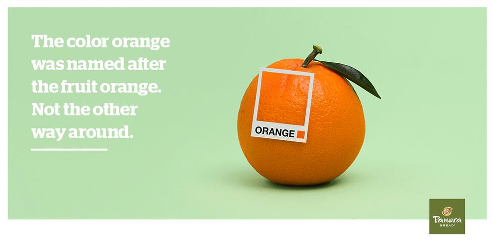 RR_orange_TW.jpg