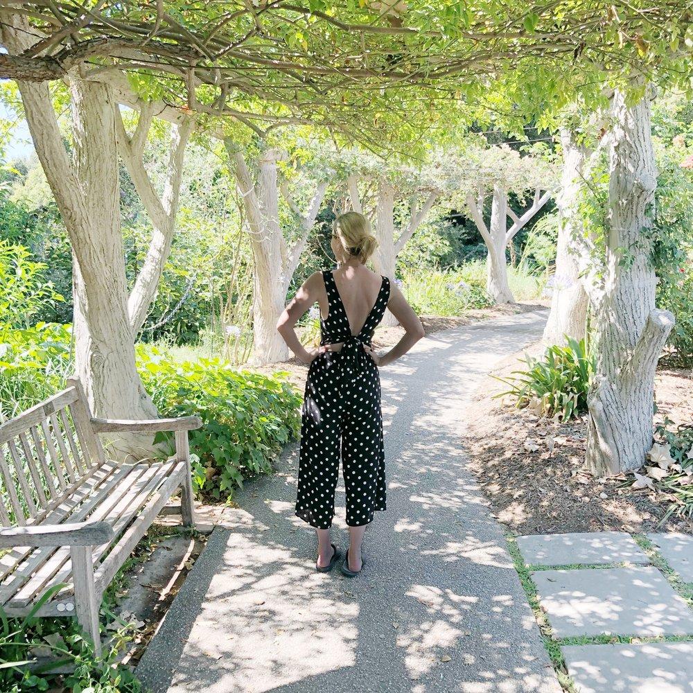 Gardens:jumper.JPG
