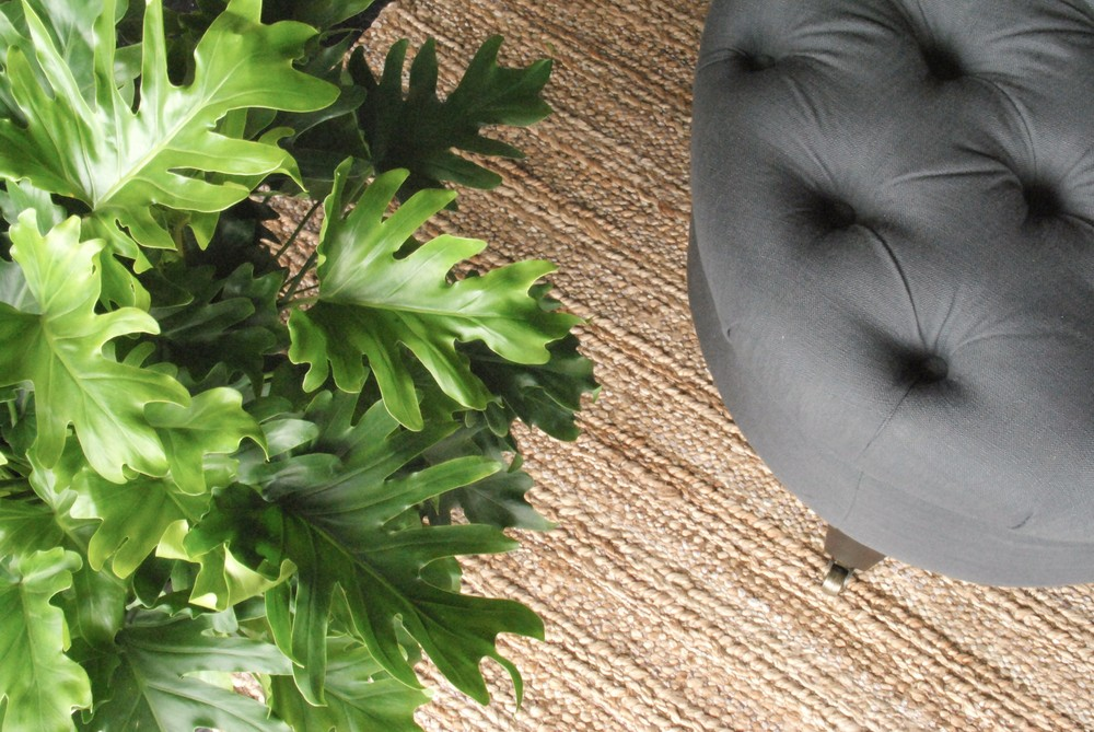 tufted bench with jute rug and plant