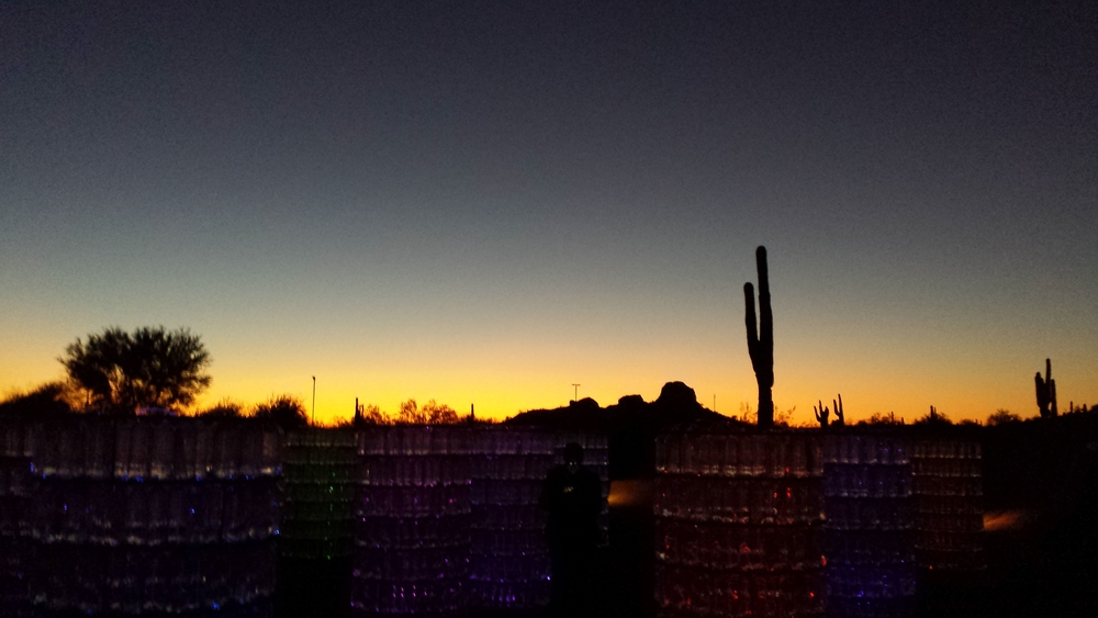 Desert Botanical Garden - View