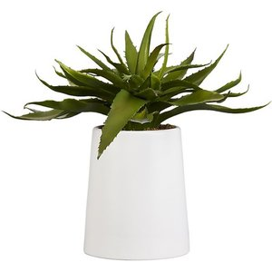 Plants  - Live in the city?  Add some green to your patio to bring a piece of nature to you. A small potted aloe plant on top of a coffee table is a simple fix.