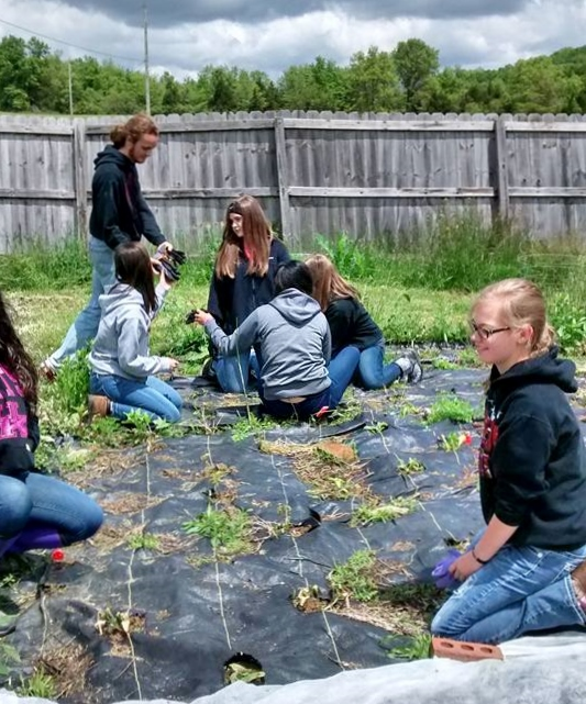 Students from Sharp Middle School's Honor Society volunteer in the garden