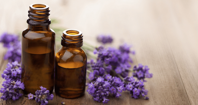 Lavender Essential Oil -