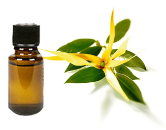 Ylang Ylang Essential Oil -