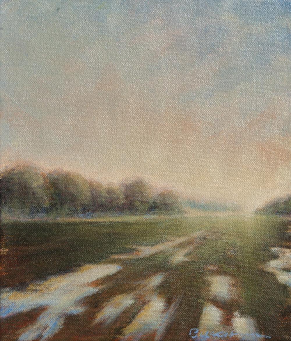 The Fields I Once Roamed_acrylic on canvas_7.jpg