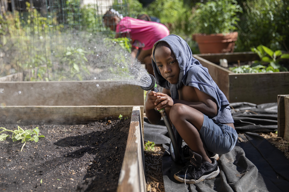 "Rayzell Buick, 6, helps Indigo Monae water plants at the Yoga Gardens space Monday, July 2, 2018, in the Lawndale neighborhood of Chicago. ""We plant the veggies, they see it grows, like, 'I created that with my hand and I can eat it,'"" she said. ""I remember when we first started the veggies and the growing, and I was eating, this kid was like, ""Uhh! What you doing? Eating dirt?' I was like, 'No man, this is good!' And then all of a sudden, every time he come in here, he's like 'Oh, I like this!'"" (Erin Hooley/Chicago Tribune)"