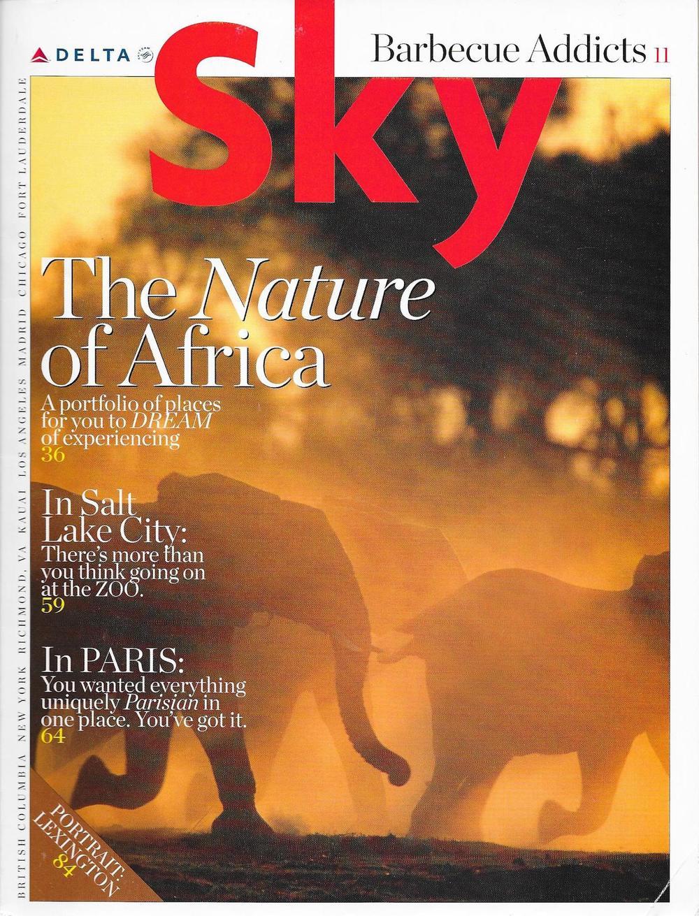 Delta Sky Mag-2.jpg