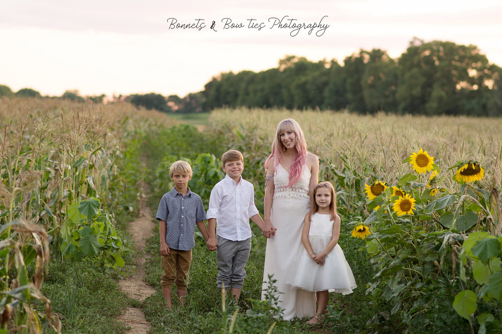 family photo shoot in wrightsville pa corn and sunflowers