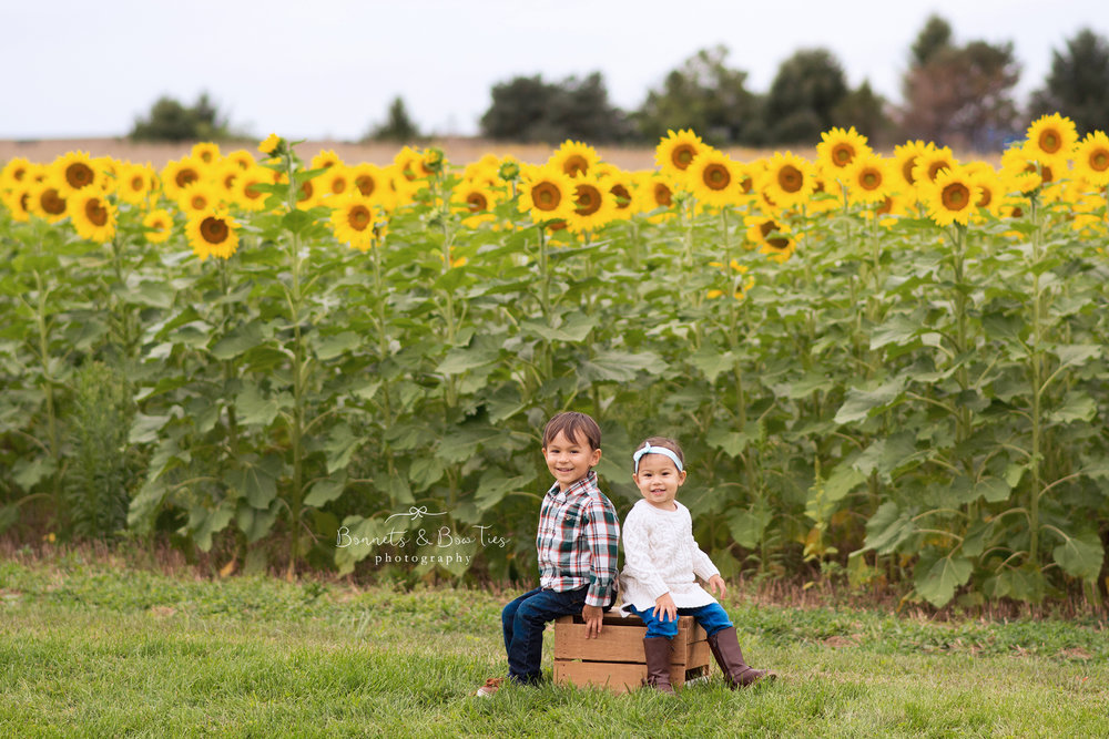 boy and girl in sunflowers.jpg