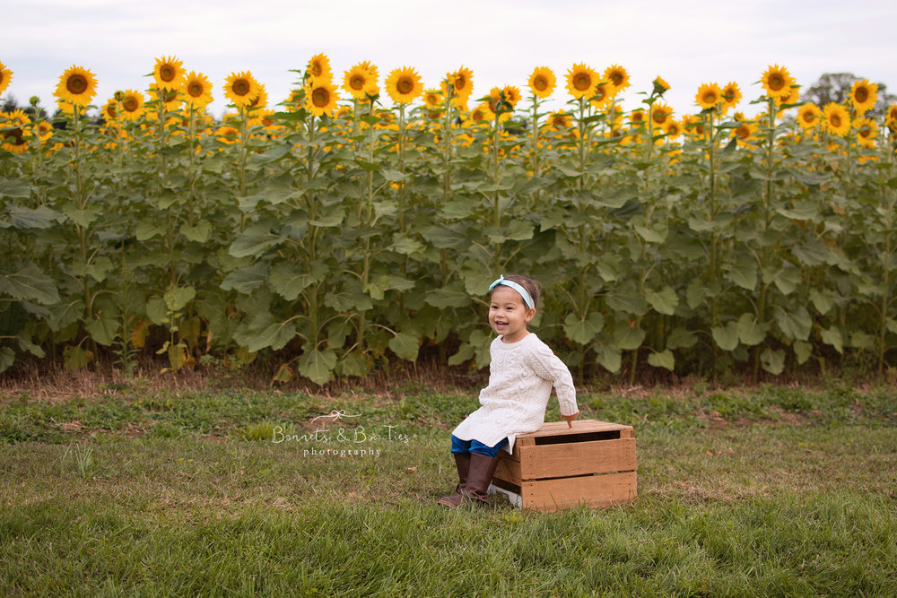 little girl in sunflowers.jpg