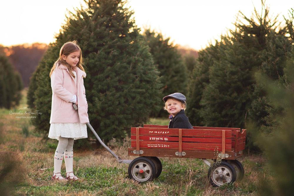 boy in wagon at a christmas tree farm.jpg