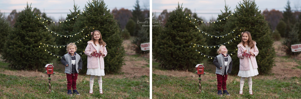 professional christmas pictures in york pa.jpg