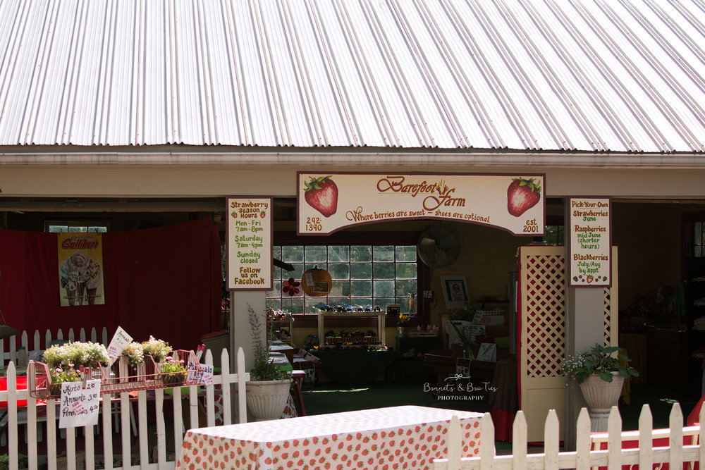 store at barefoot farms.jpg