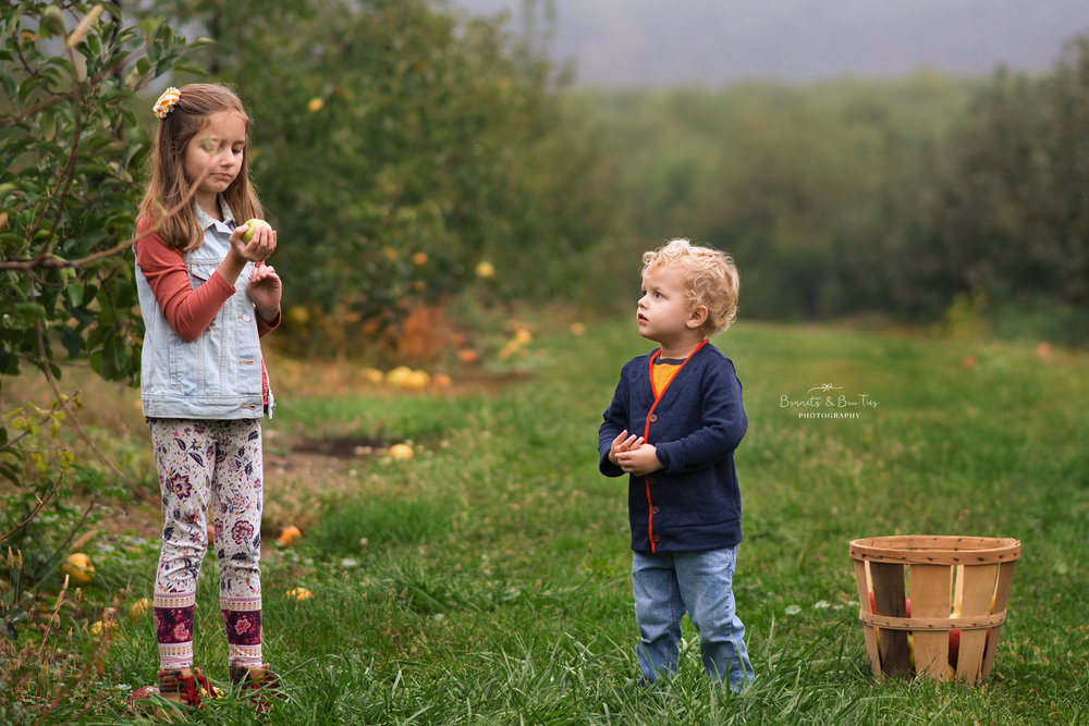 york pa photographer at forge hill orchards.jpg