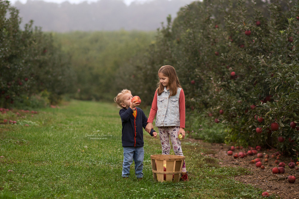 apple orchard mini session mount wolf pa.jpg