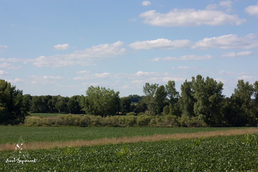 July 4 Wisconsin-0292.jpg