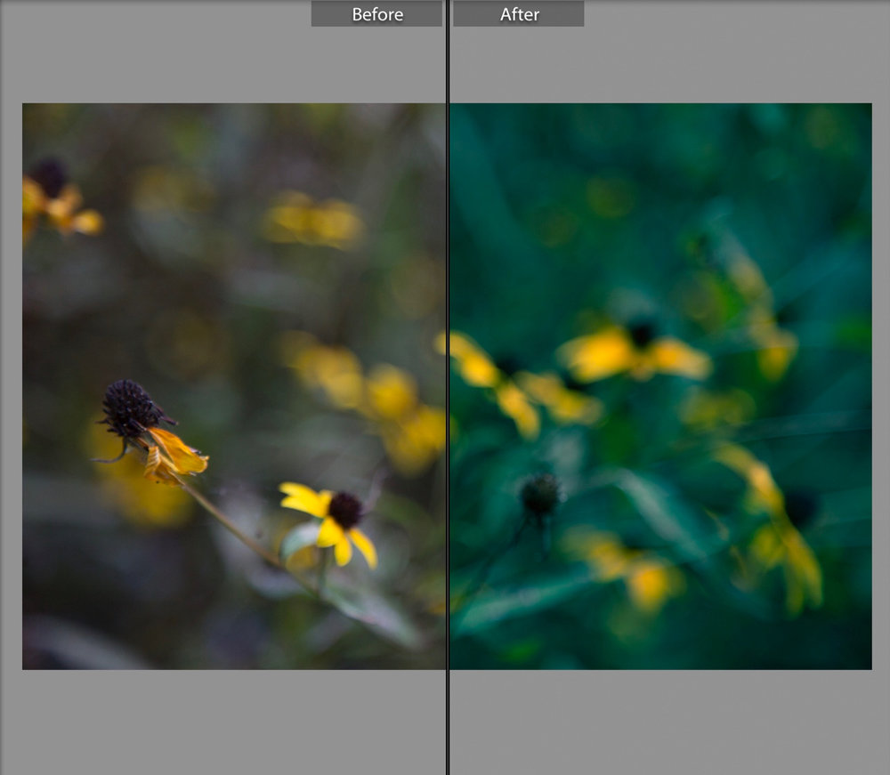 lightroom_split_toning - 2.jpg