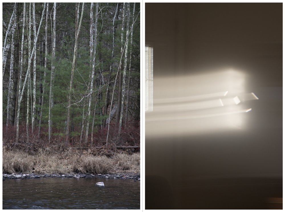 "to return: Little Pine 1, Inkjet Photograph, 48"" X 36,"" 2015."