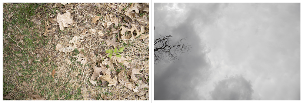 "And so on and so forth in much the same vein: Abandoned Site, Inkjet Photograph, 24"" X 72,"" 2015."