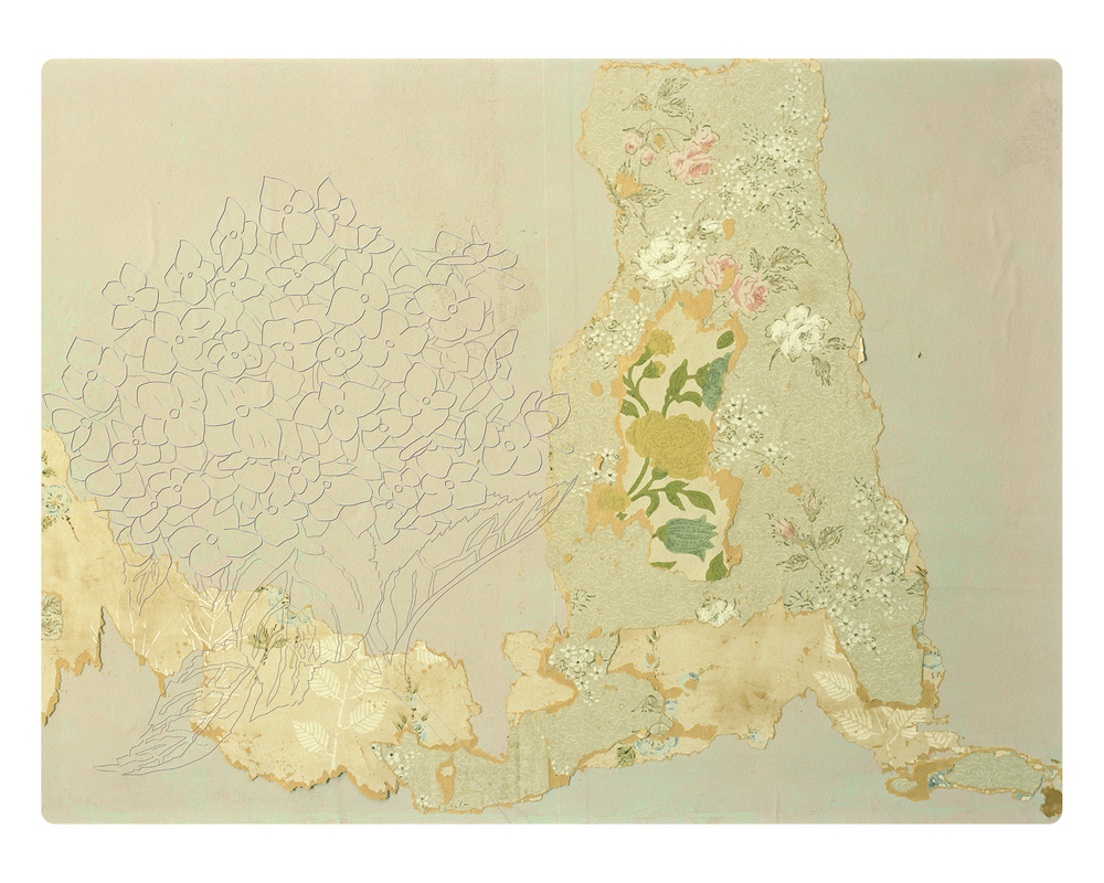 "Your Form of Ennui cannot be Cured.  Hydrangea Study: Frigidity, Heartlessness.  2011. Inkjet, second surface mounted onto digitally dye-cut and etched plexi-glass. 30"" T X 40"" W."