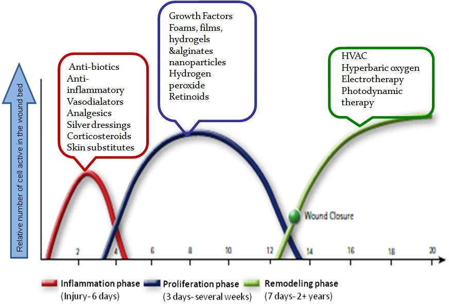 Wound Healing Products on the Market today are designed to target one, or at most, two phases of the wound healing process. Products that target the inflammation include anti-inflammatories, vasodilators, analgesics, silver dressings, and corticosteroids. Other products such as growth factors, nanoparticles, hydrogen peroxide and retinoids are used to try and boost the proliferation phase.  The final category of products are employed only when none of the products in the first two categories have been effective. These therapies, including Hyperbaric oxygen and photodynamic therapy,  have limited effectiveness and are cost prohibitive.    TolaSure Targets all Phases of the Healing Process: